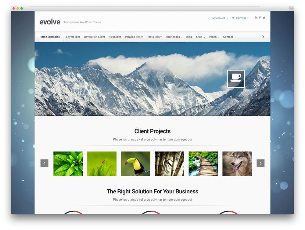 meilleur-theme-wordpress-evolve