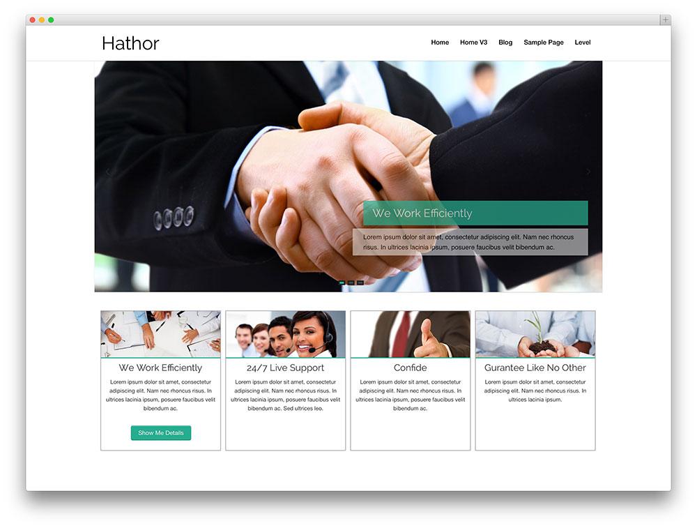 meilleur-theme-wordpress-hathor